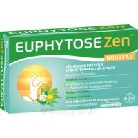 Euphytosezen Comprimés B/30 à AYGUESVIVES