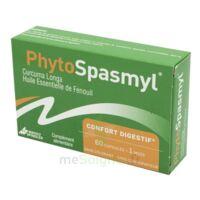 Phytospasmyl Caps B/60 à AYGUESVIVES