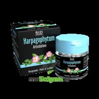 Sid Nutrition Phytoclassics Harpagophytum Gélules B/30 à AYGUESVIVES