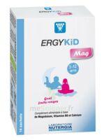 Ergykid Mag Poudre Solution Buvable 14 Sachets à AYGUESVIVES