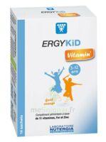 Ergykid Vitamin' Poudre Solution Buvable 14 Sachets à AYGUESVIVES
