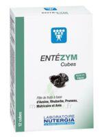 Entezym Cube à Mâcher équilibre Flore Intestinale B/12 à AYGUESVIVES