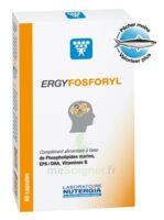 Ergyfosforyl Caps B/60 à AYGUESVIVES