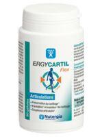 Ergycartyl Flex Gélules Pot/90 à AYGUESVIVES
