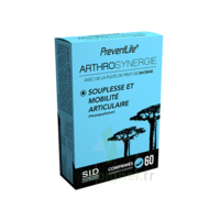 Sid Nutrition Preventlife Arthrosynergie Comprimés B/60 à AYGUESVIVES