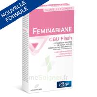 Pileje Feminabiane Cbu Flash - Nouvelle Formule 20 Comprimés à AYGUESVIVES