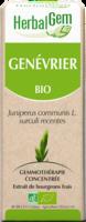 Herbalgem Genevrier Macerat Mere Concentre Bio 30 Ml à AYGUESVIVES