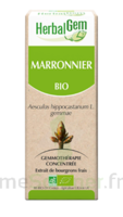 Herbalgem Marronnier Macérat Bio 30ml à AYGUESVIVES