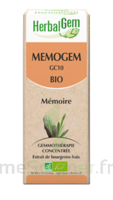 Herbalgem Memogem Solution Buvable Bio 30ml à AYGUESVIVES