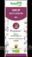 Herbalgem Sirop Bio Des Fumeurs 150ml à AYGUESVIVES