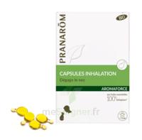 Aromaforce Caps Inhalation Bio B/15 à AYGUESVIVES
