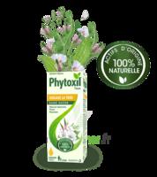 Phytoxil Toux Sans Sucre Sirop Adulte Enfant +2 Ans Fl/120ml à AYGUESVIVES